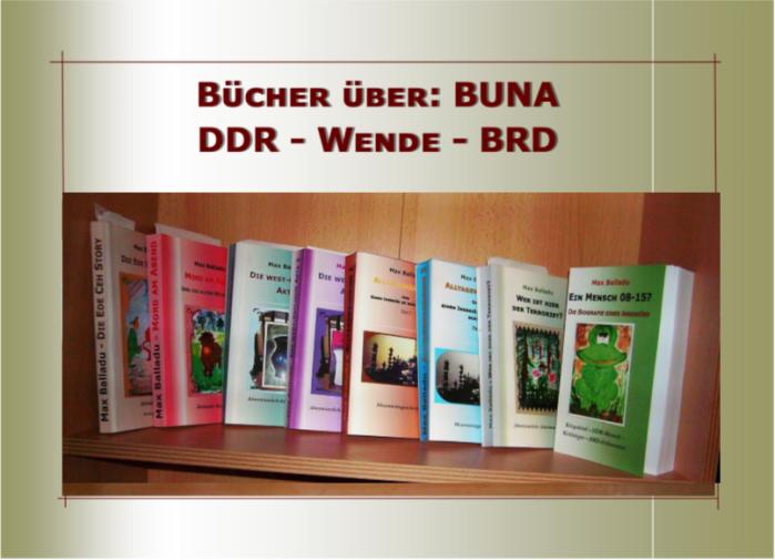 8bücher für maxballadu.blog